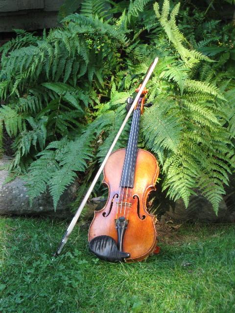 Virginia's violin